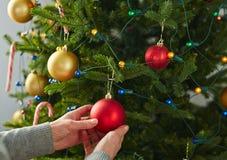 Christmas bubble on coniferous branch Stock Photos