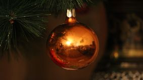The christmas bulb on pine tree. royalty free stock image