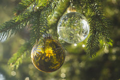 Christmas Bulbs Royalty Free Stock Images