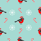 Christmas bullfinch bird wearing red santa hat, snowflake, candy cane. Seamless Pattern Decoration. Wrapping paper, textile templa. Te. Blue background. Flat Royalty Free Stock Photo