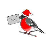 A Christmas bullfinch with a letter in his beak Royalty Free Stock Image