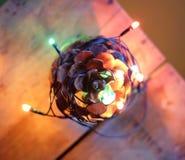 Christmas bump, tree Royalty Free Stock Photos