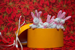 Christmas Bunnies Stock Photo
