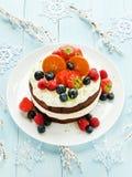 Christmas cake Royalty Free Stock Image