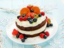 Christmas cake Royalty Free Stock Photo