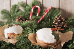 Christmas cake with homemade caramel cane. On the background of trees stock photos