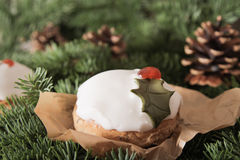 Christmas cake with homemade caramel cane. On the background of trees stock photo