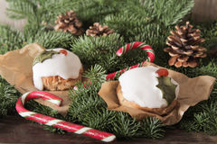Christmas cake with homemade caramel cane. On the background of trees royalty free stock image