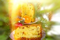 Christmas cake (panettone) Stock Photos