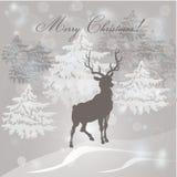 Christmas Calligraphic Design Elements Royalty Free Stock Image