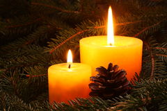 Christmas candle. Two yellow candle in a needles Stock Photography