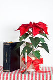 Christmas candle with bible Stock Photography