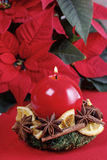 Christmas candle holder made of moss, dried fruits and cinnamon Royalty Free Stock Images