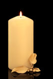 Christmas Candle and Holly Stock Photos