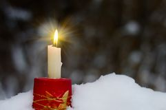 Christmas candle light in the forest. Christmas candle light in the winter forest Stock Photo