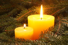 Christmas candles. Two yellow candles in a needles Stock Photo