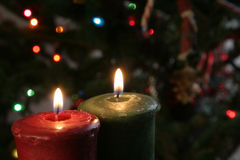 Christmas Candles. Set against a tree Royalty Free Stock Image