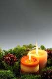 Christmas candles royalty free stock photo