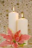 Christmas Candles and Poinsettia Royalty Free Stock Photo