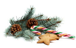 Christmas candy with a branch of spruce Stock Photo