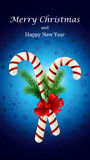 Christmas candy cane decorated with a bow and tree branches. Christmas candy cane decorated with a bow and Christmas tree branches Stock Images