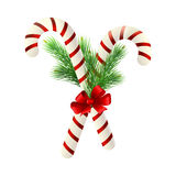 Christmas candy cane decorated with a bow and tree branches. Christmas candy cane decorated with a bow and Christmas tree branches Royalty Free Stock Photo