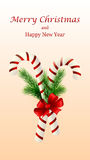 Christmas candy cane decorated with a bow and tree branches. Christmas candy cane decorated with a bow and Christmas tree branches Royalty Free Stock Images