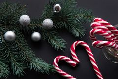 Christmas candy cane with silver evening balls and green fir tree on black background. Royalty Free Stock Photos