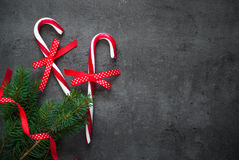 Christmas candy cane, tree branch and decorations Stock Image