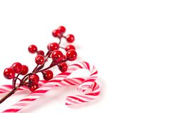 Christmas candy canes with a branch of decorative berries. royalty free stock image