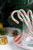 Christmas Candy Canes in a glass Stock Image