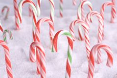 Christmas Candy Canes in Snow Royalty Free Stock Photography