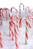 Christmas Candy Canes in the snow portrait Stock Images