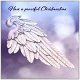 Christmas Card with Angel Wing and blur background. Card with wooden angel wing on snowy background in light blue and rose pink Stock Images