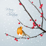 Christmas card with bird sitting on branch Stock Photo