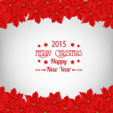 Christmas card. Borders made of poinsettia flowers and fir branches over white background Royalty Free Stock Image