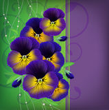 Christmas card with a bouquet of pansies Royalty Free Stock Images