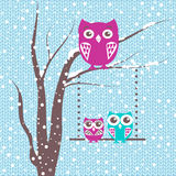 Christmas card a branch with family of owls in winter Royalty Free Stock Photography