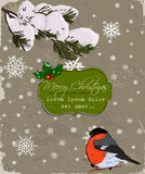 Christmas card with bullfinch. Royalty Free Stock Image