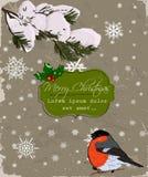 Christmas card with bullfinch. Royalty Free Stock Image