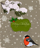 Christmas card with bullfinch. Stock Image