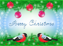 Christmas card with bullfinches. Balls and snowflakes on fir branches Royalty Free Stock Photo