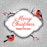 Christmas card with bullfinches and rowanberries Royalty Free Stock Photography