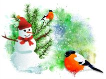 Christmas card with bullfinches and snowman. stock photos