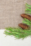 Christmas card with canvas, fir branch and pine cones on burlap Stock Images