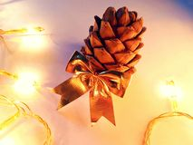 Christmas card with cedar cone closeup. Shiny golden bow illuminate by garland Stock Images
