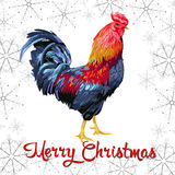 Christmas card with Chicken and flowers. Christmas card with Chicken in white background Royalty Free Stock Photo