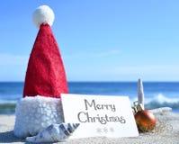 Christmas card with christmas decoration. Merry Christmas card with christmas decoration and sea shell on a tropical beach. Christmas holidays. Greeting card on Stock Image