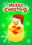 Christmas card with cute chick, Santa hat and heart Royalty Free Stock Photos