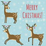 Christmas card with cute deers Royalty Free Stock Images